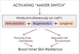 SK-II Essential Power Essence master switch