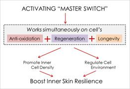 SK-II Essential Power Essence master switch